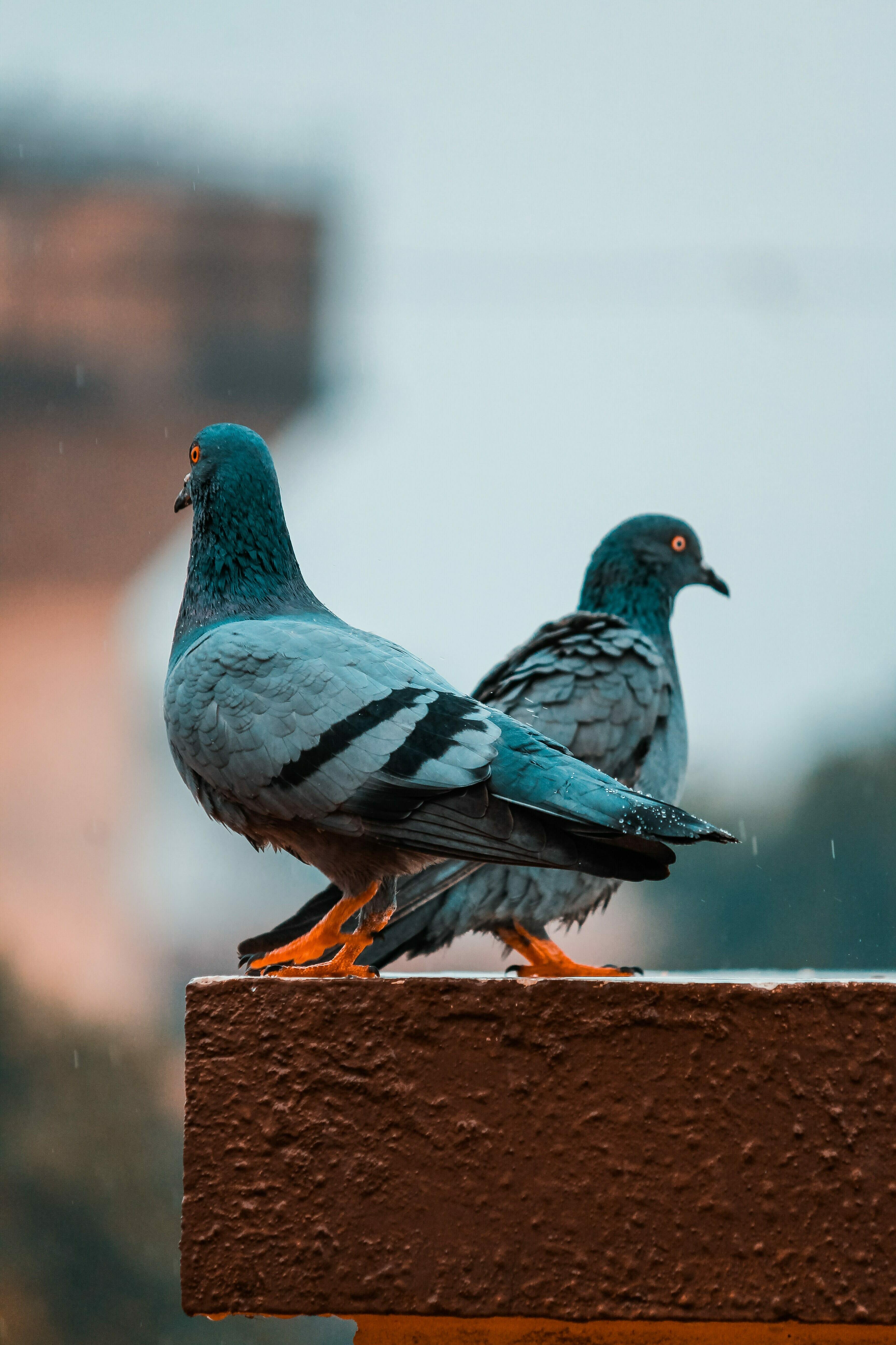 Photo by kalpesh patel on Unsplash